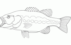 Large Mouth Bass Fish Free DXF File